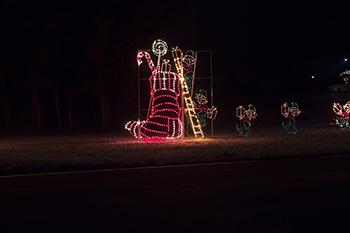 Firestone park light show raw 1 8.jpg