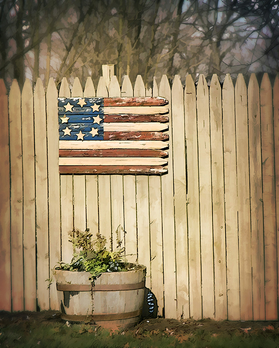 american flag on a fence cooked 1 31.jpg