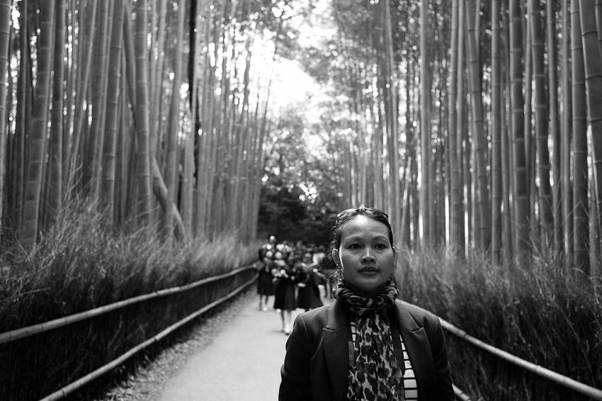Arashiyama, Kyoto, Japan, 2012