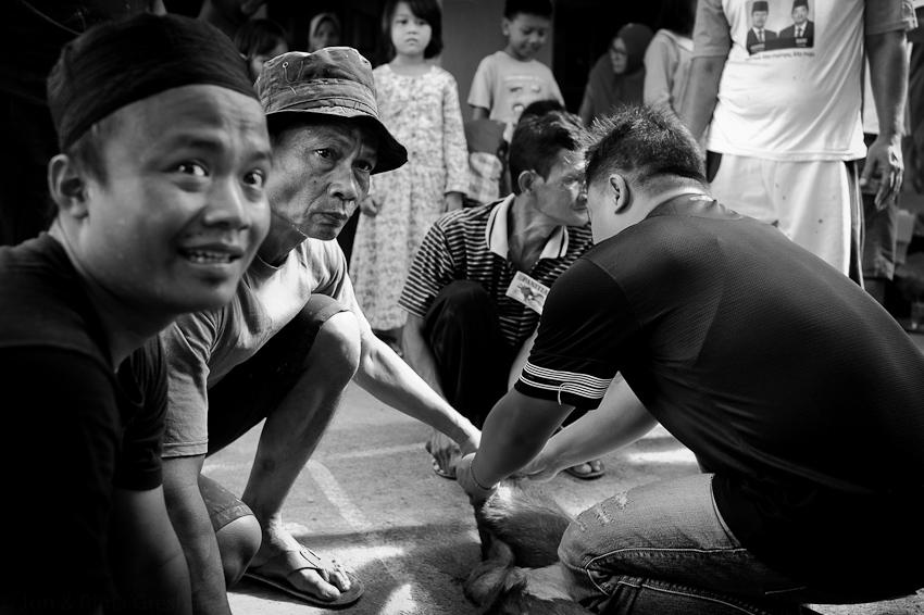 Jakarta Sept 2016-38.jpg