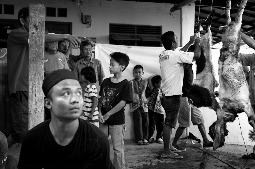 Jakarta Sept 2016-50.jpg