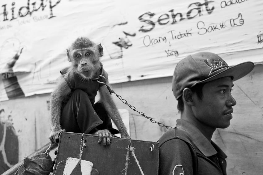 Jakarta Jun 2017-5.jpg