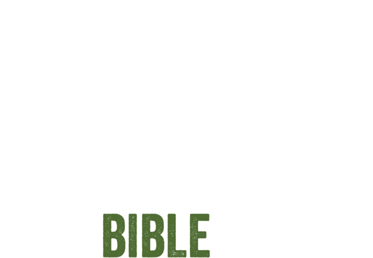 HAITI BIBLE MISSION