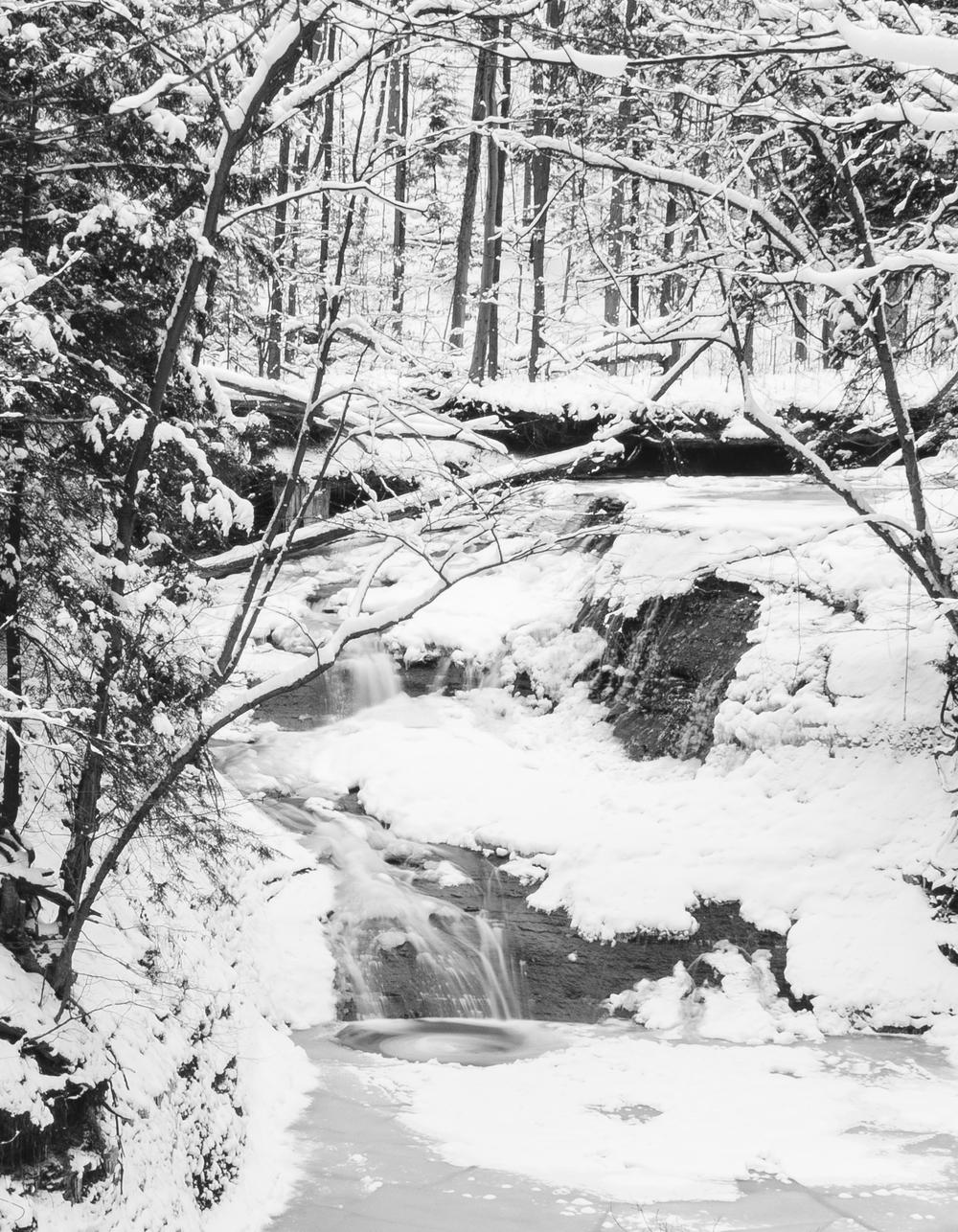 winter-5567.jpg