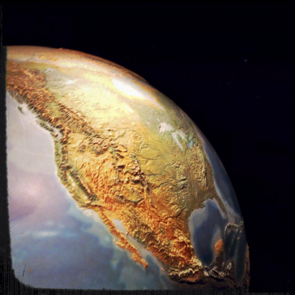 Natural History Museum-0186.jpg