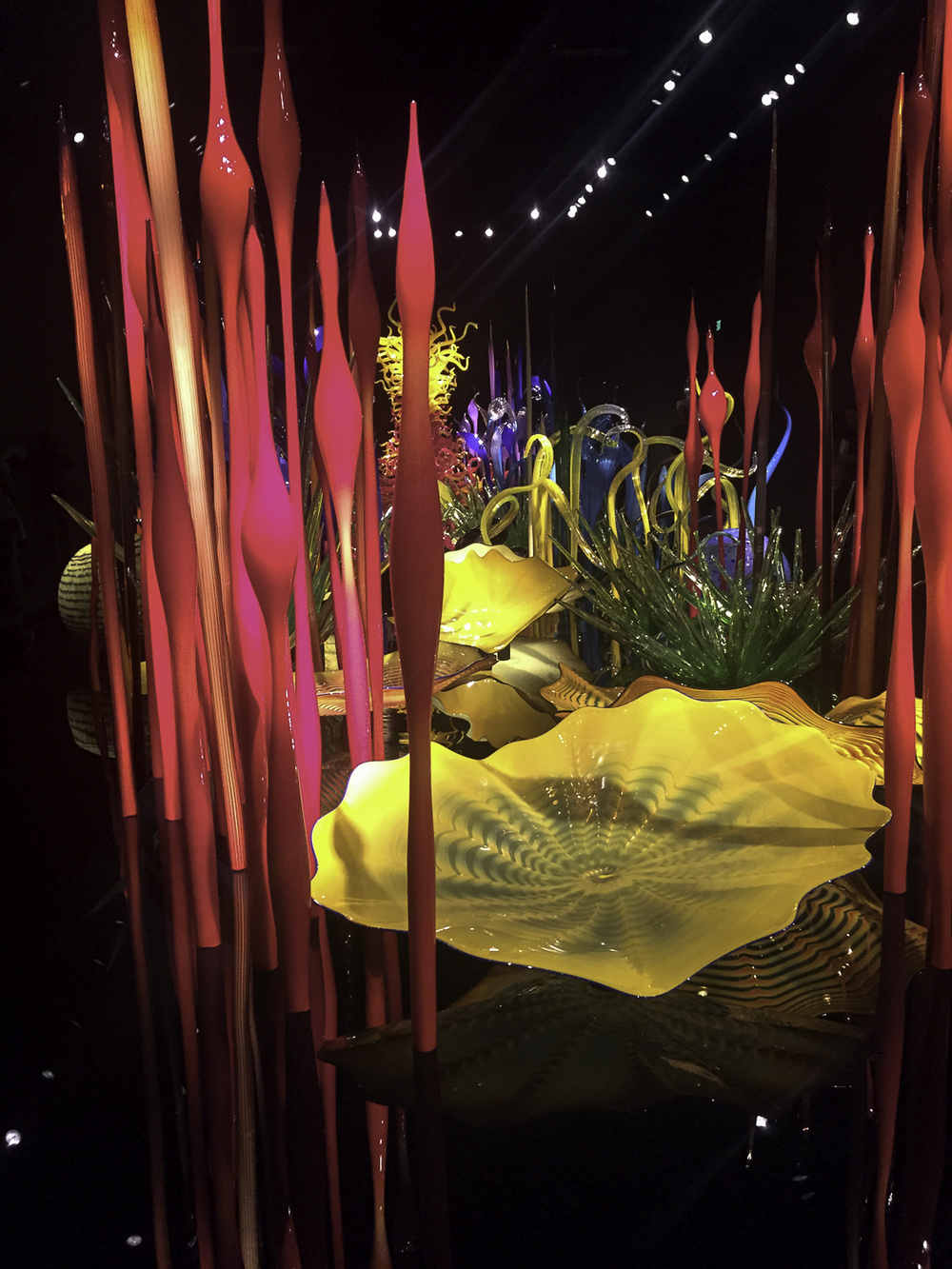 Chihuly Glass Museum-67.jpg