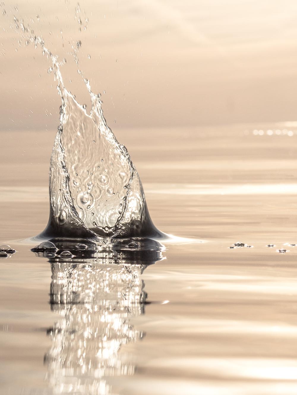 Silver Splash
