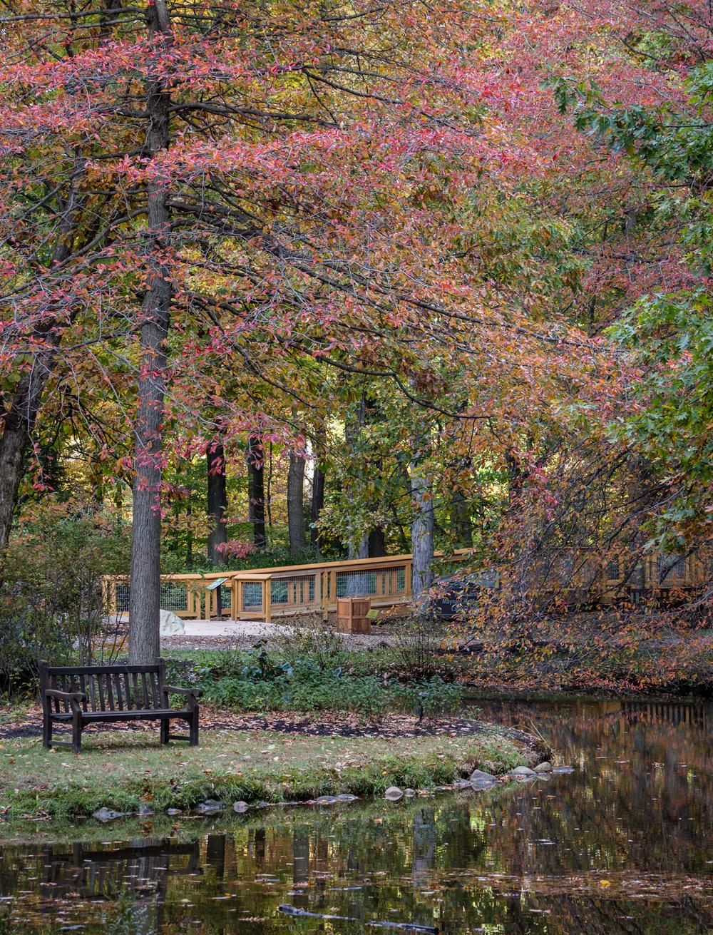 fall2015-8.jpg