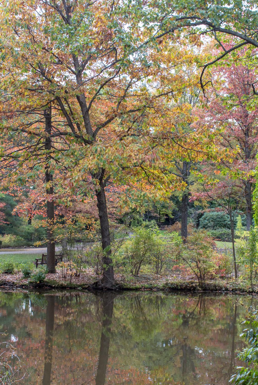 Fall2015-31.jpg