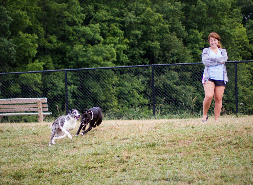 Canine Meadows-8.jpg