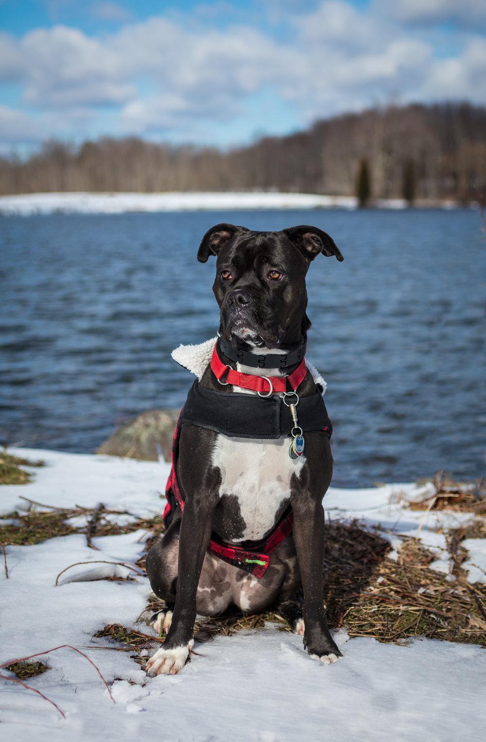 Lacey 2-year--9.jpg