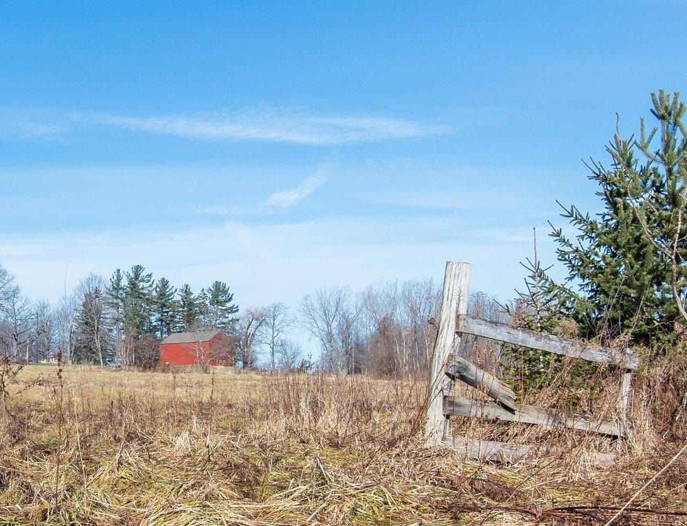 Skok Meadow-6155.jpg