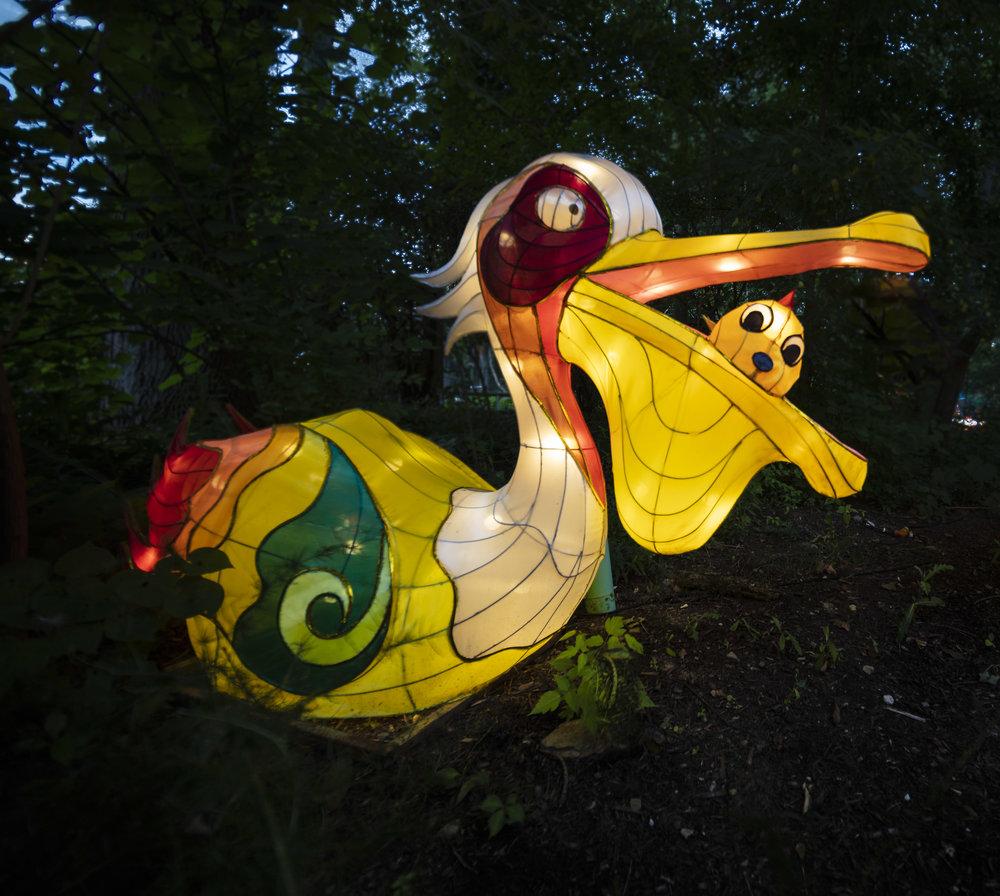 Asian Lanterns17.jpg
