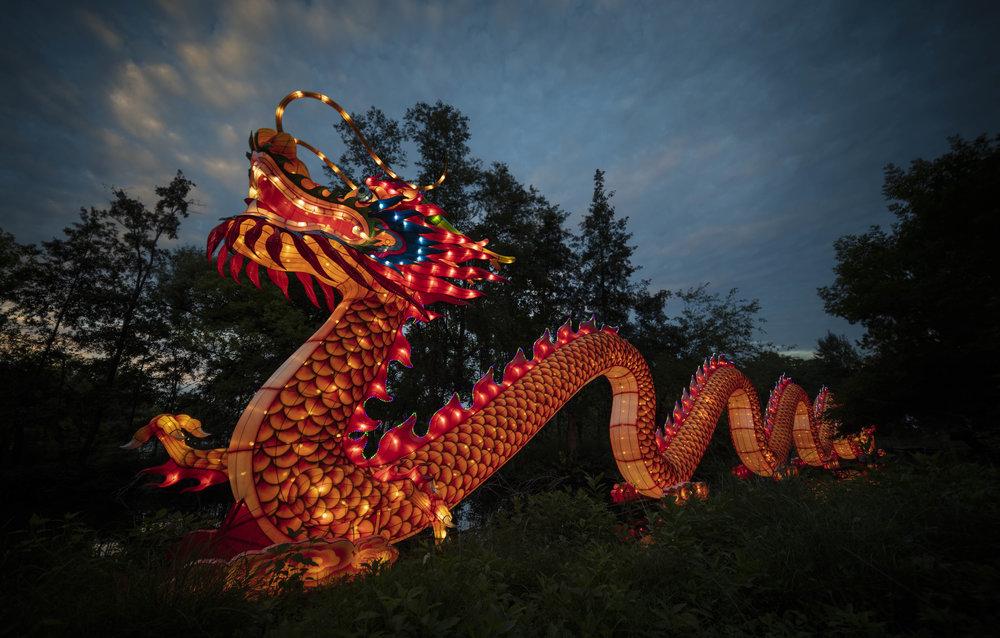 Asian Lanterns21.jpg
