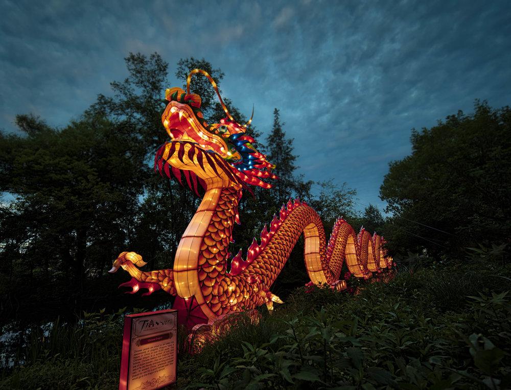 Asian Lanterns23.jpg