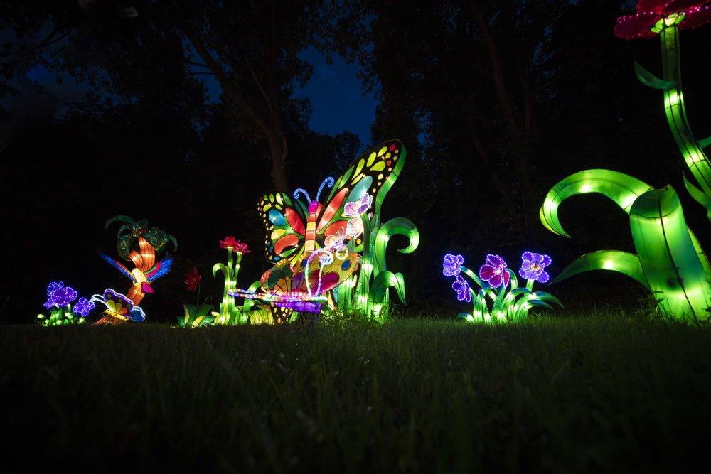 Asian Lanterns28.jpg