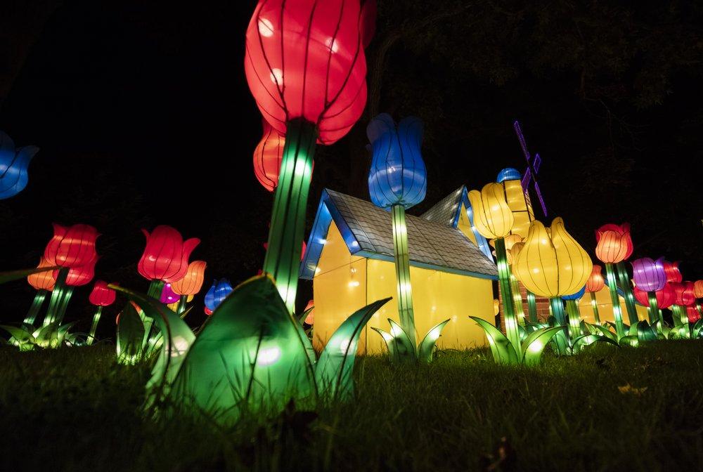 Asian Lanterns36.jpg