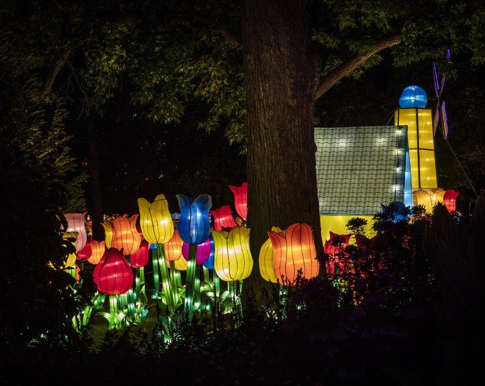 Asian Lanterns43.jpg