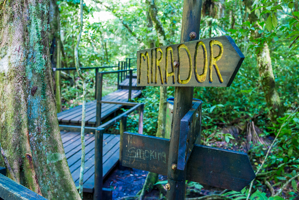 "I'd never heard of Semuc Champey until the day we arrived. Golan, our friend and host, said, ""Go - it's beautiful, you will love it."" Yet, we still had no idea what IT was. We climbed up and up and up some more to a spot called Mirador (lookout)..."