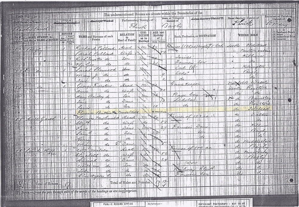 "1881 Census-- Florence Britton a ""Nurse Child"" with the Freestone Family"