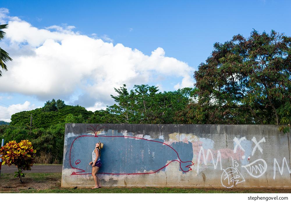 hawaii oahu kauai na pali pipeline off the wall
