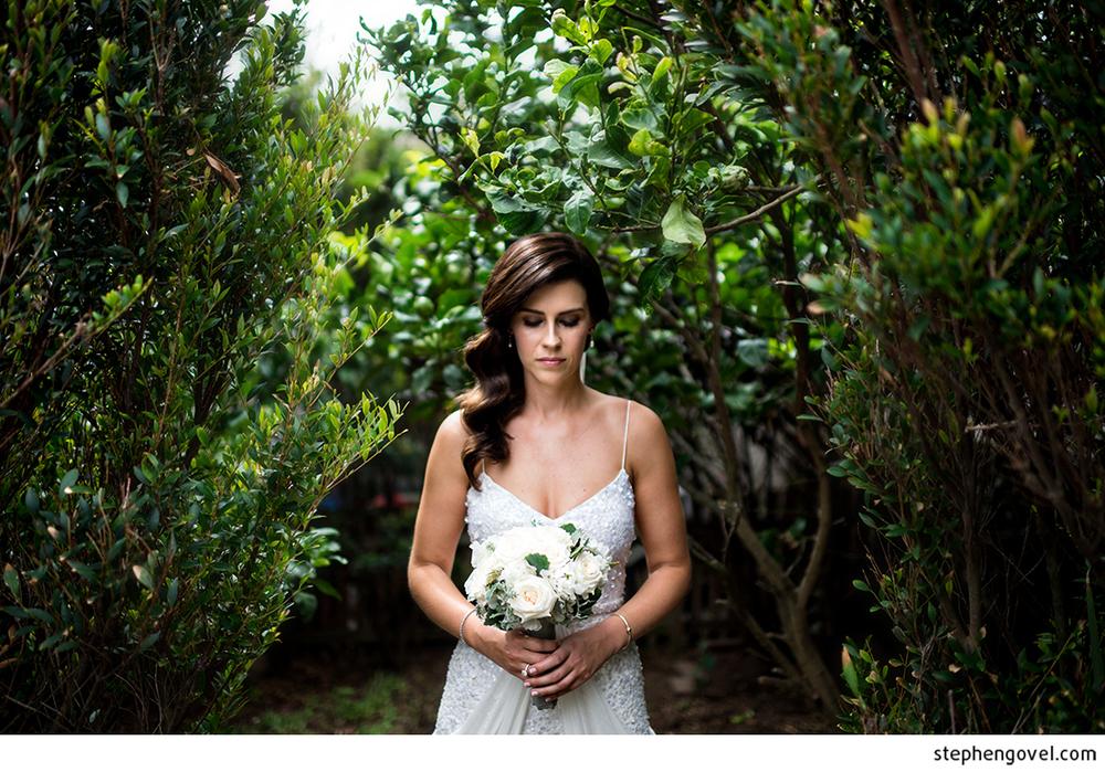 stephengovelmaroubrawedding1.jpg