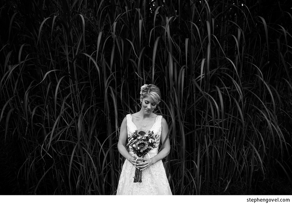 govelwillowwoodwedding9.jpg
