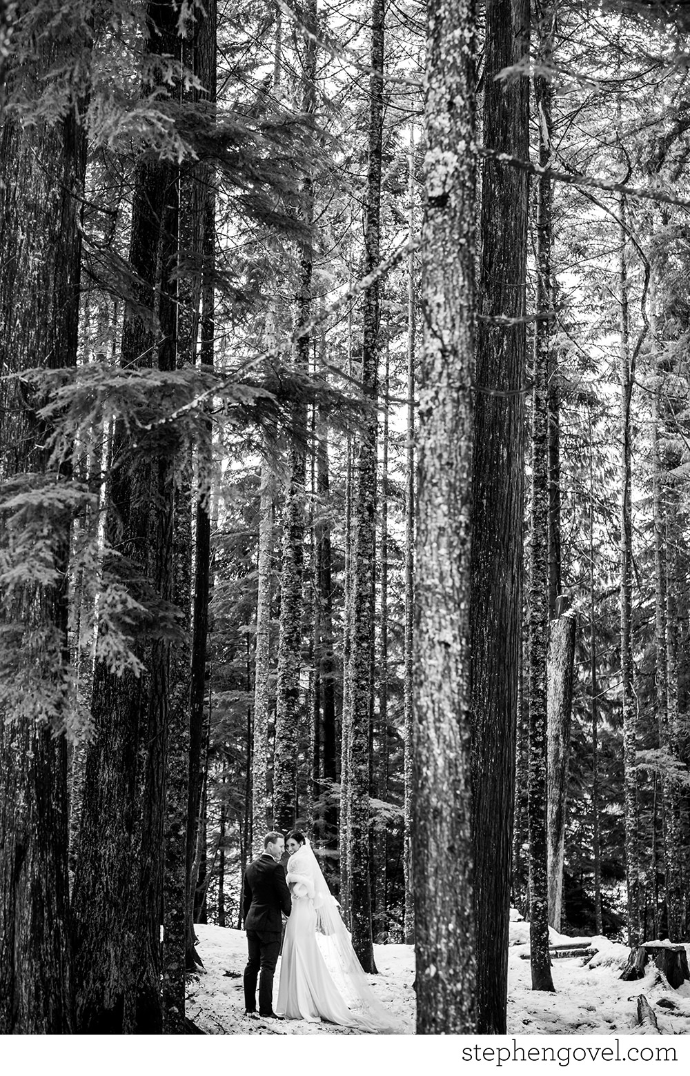 whistlerwinterwedding16.jpg