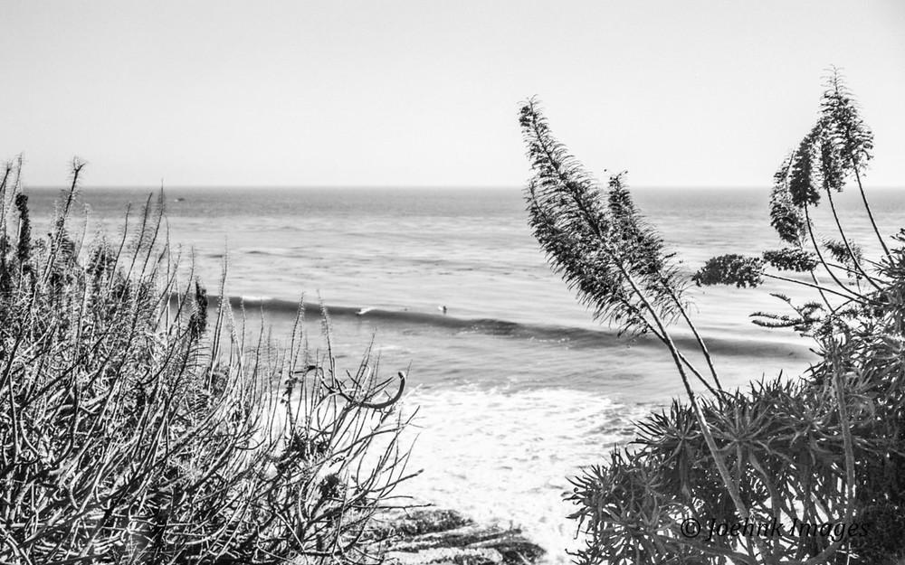 Pismo Beach #46