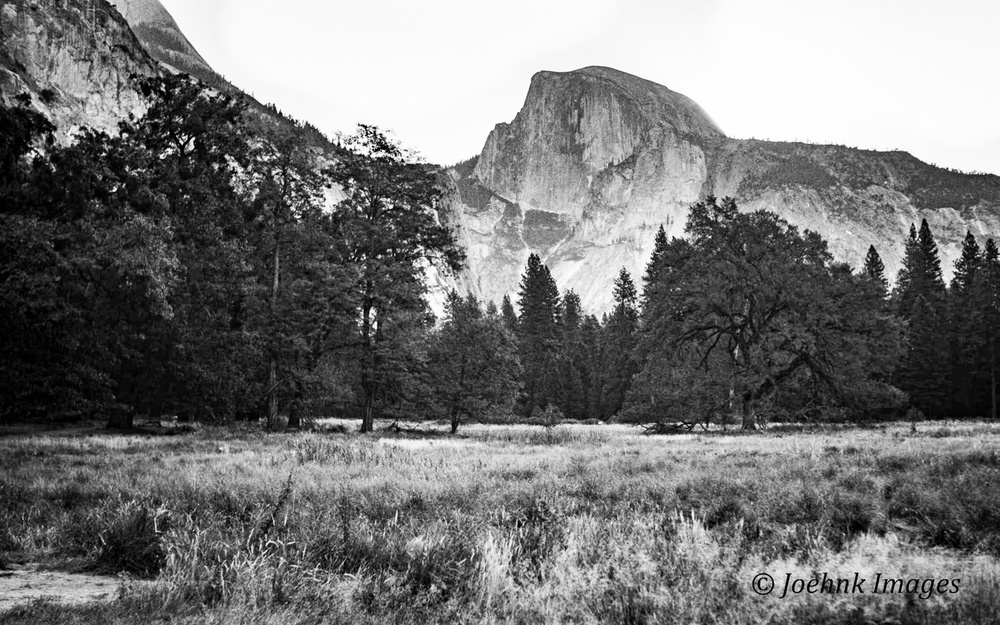 Yosemite #12