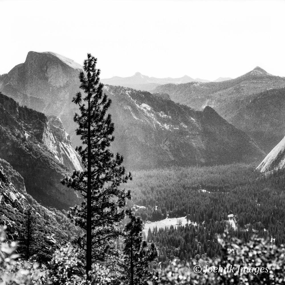 Yosemite #37