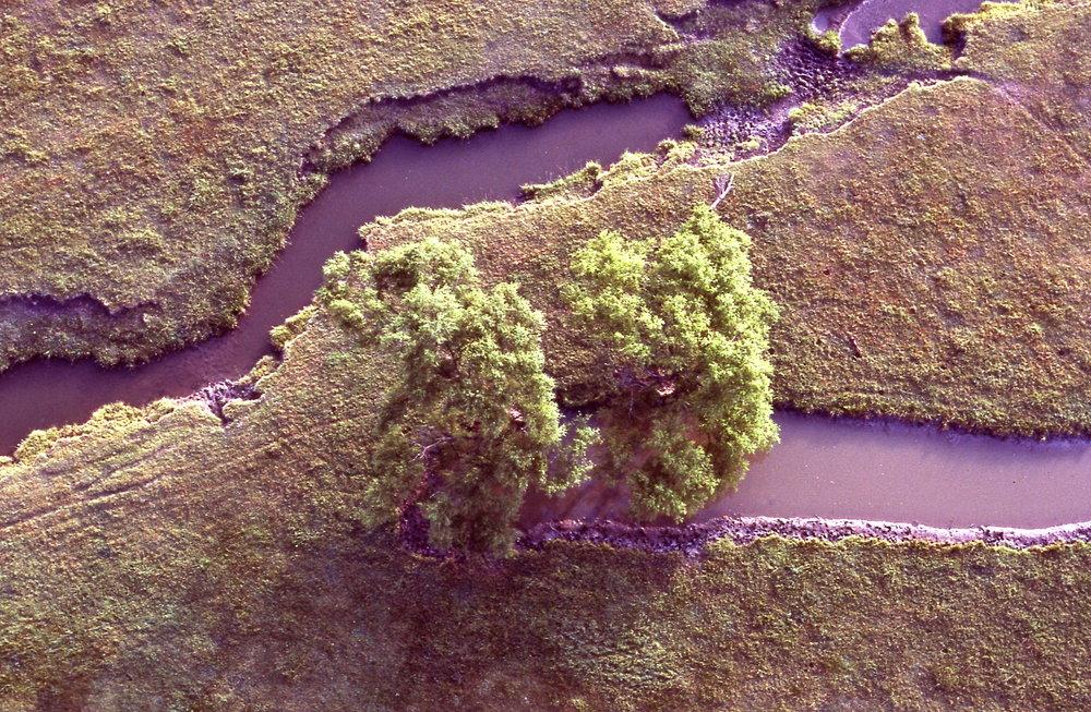 LloydCates-creek1983.jpg