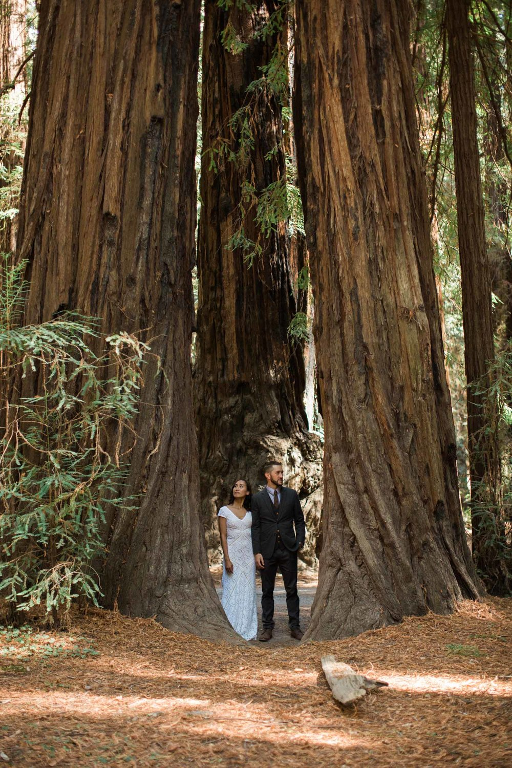 BKM-Photography-Russian-River-Wedding-Redwoods-Guerneville-California-Destination-Wedding-Photographer-0026.jpg