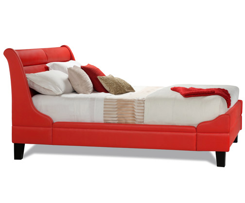 Heart Awareness bed Charles P Rogers 2.jpg