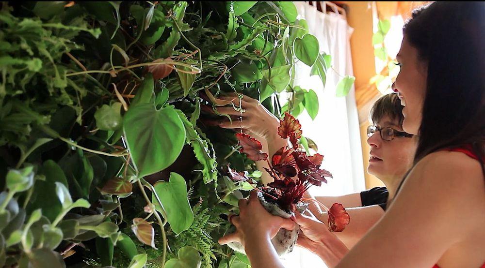 Summer_Rayne_Oakes_placing_begonia_in_vertical_wall_garden.jpg