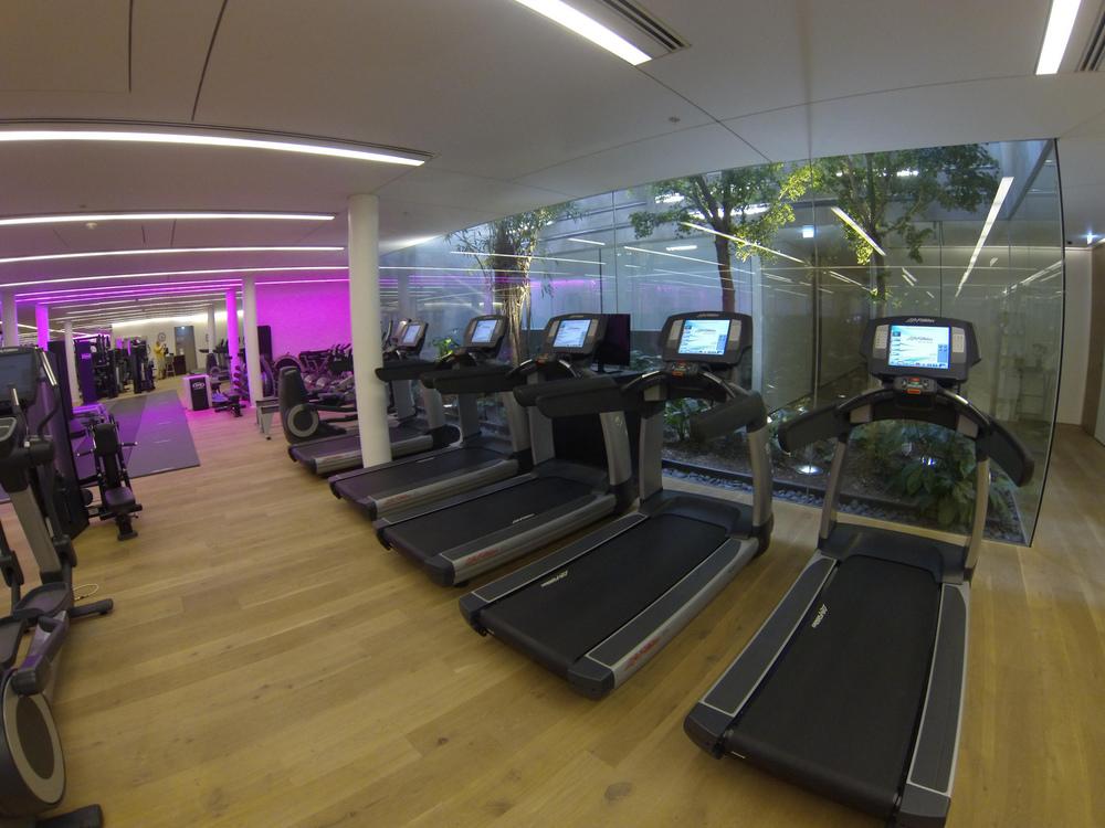 conservatorium-hotel-amsterdam-gym-trees-in-lobby-atrium.jpg