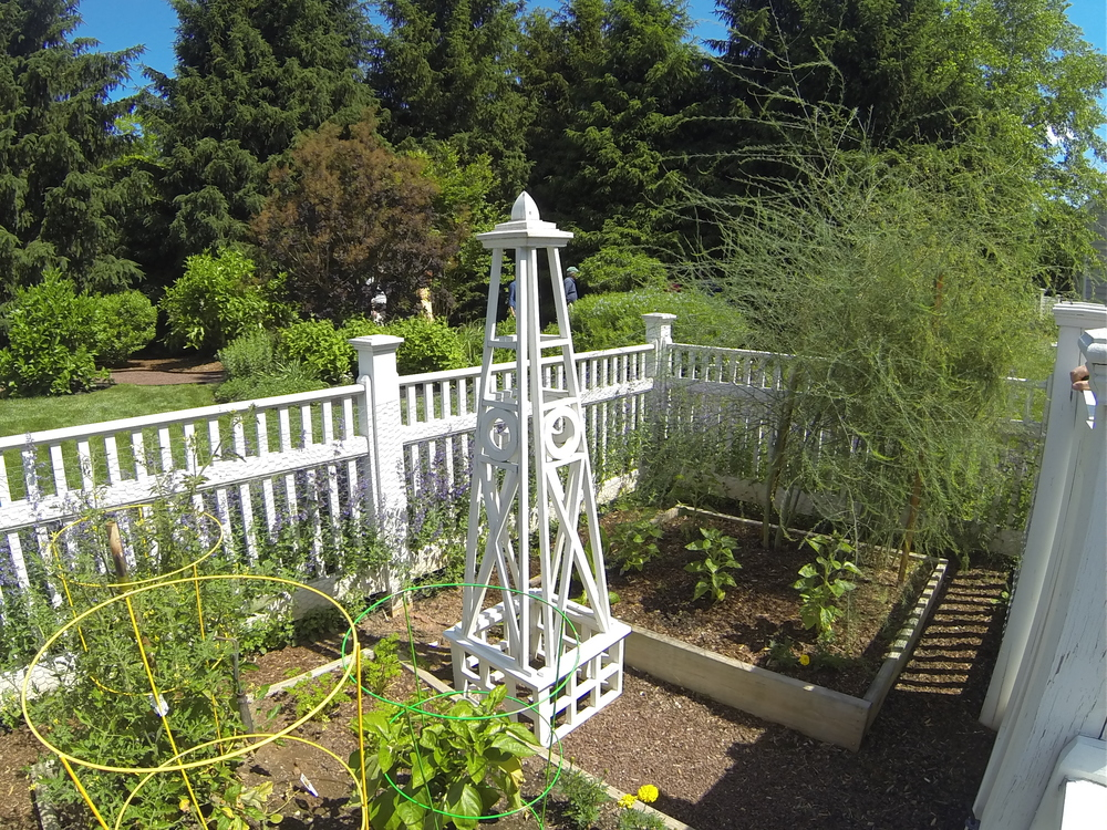 Enclosed vegetable and herb garden featuring an asparagus patch and raised beds.