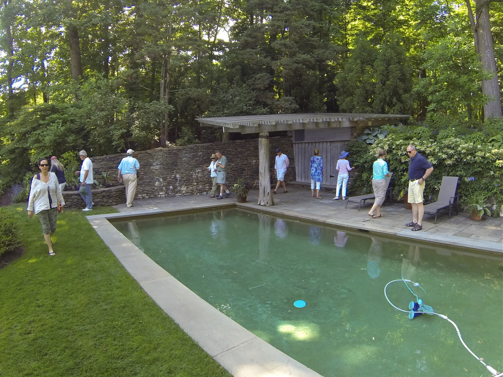 The lap pool was surrounded by a stone wall and rustic pergola. All in all, an amazing woodland retreat!