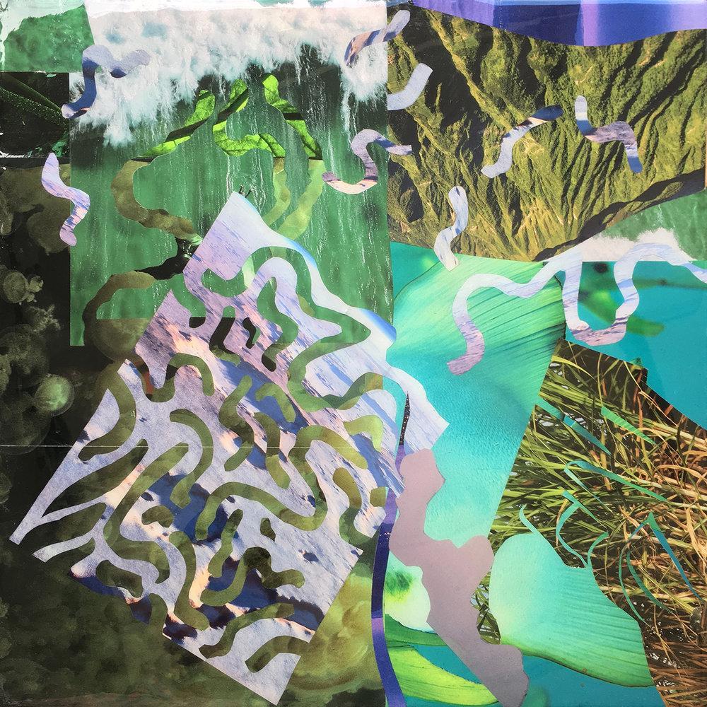 collage_edits12.jpg