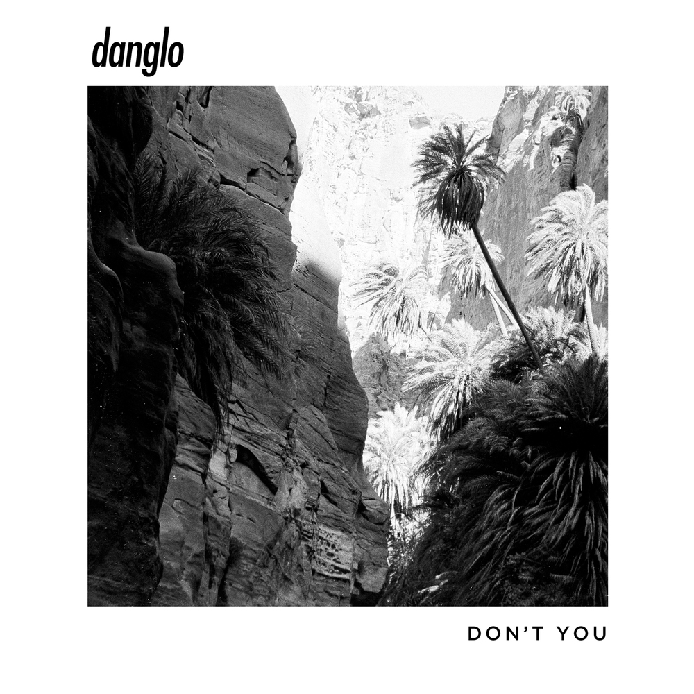 Don't You - Danglo