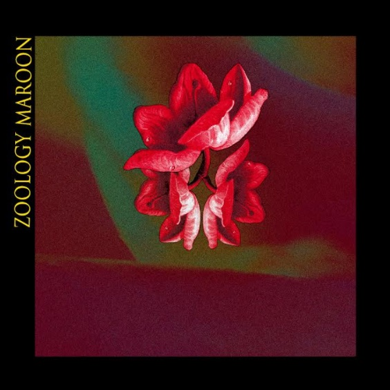 Zoology - Maroon