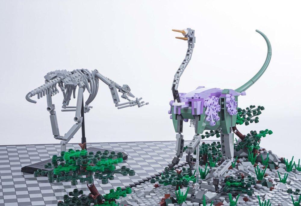 Dino 4 C.jpg
