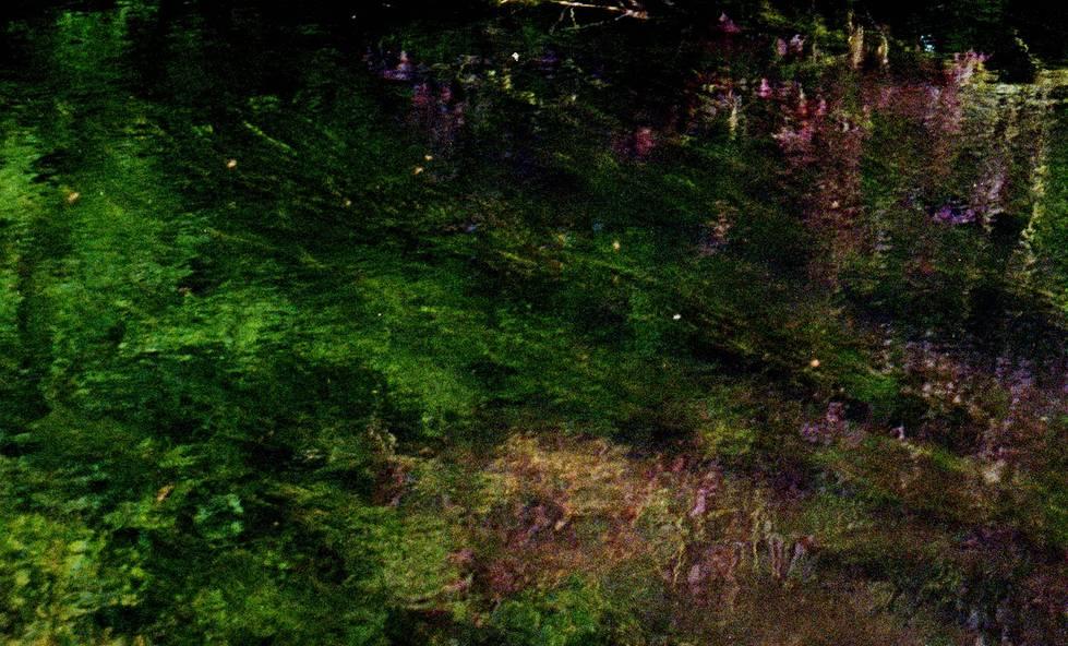 Ophelia (Monet)