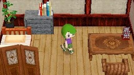 MySims Kingdom DS