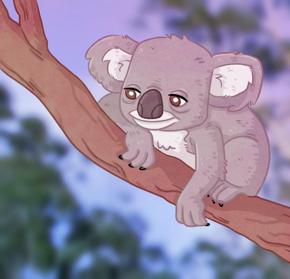 Koala chill