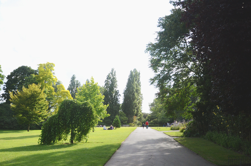 rosegardenpath.jpg
