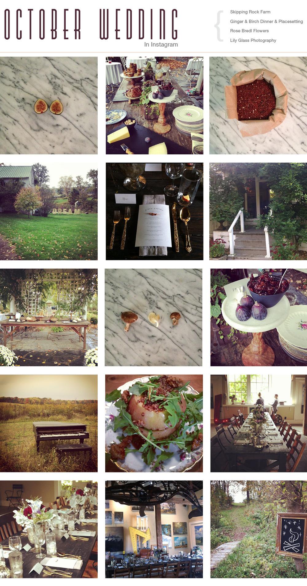 images from Whitney Lowdermilk/Karen Lowdermilk /ginger&birch