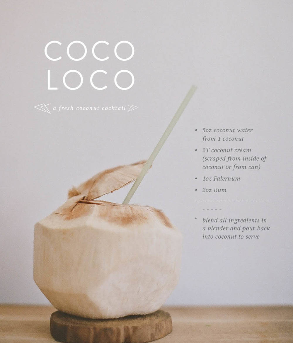 coco loco by ginger & birch | images by lily glass