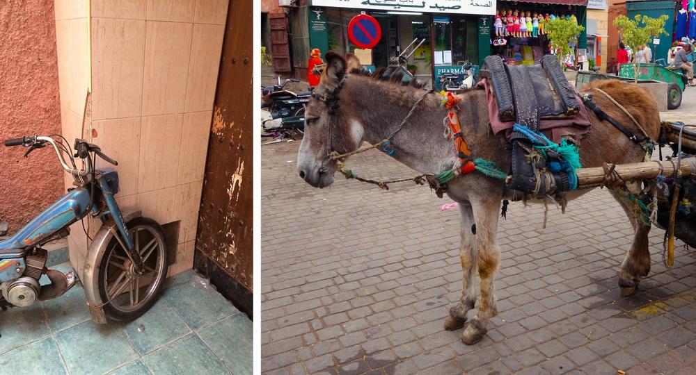 Marrakech Morocco , streets, donkey