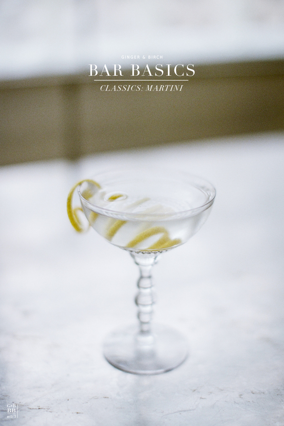 classic cocktail : martini